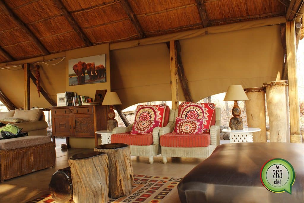 Changa Safari Camp – Matusadona National Park Kariba - 263Chat