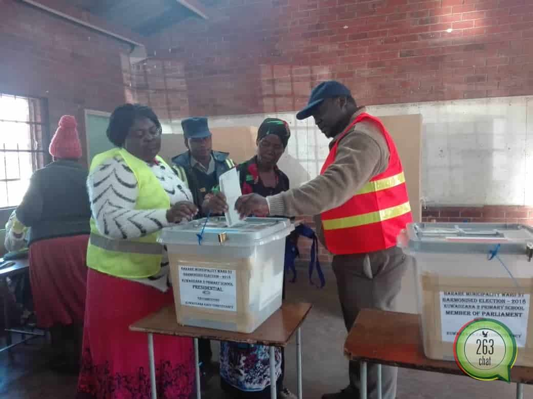 Government Urged to Grant Diaspora Voting Rights   263Chat