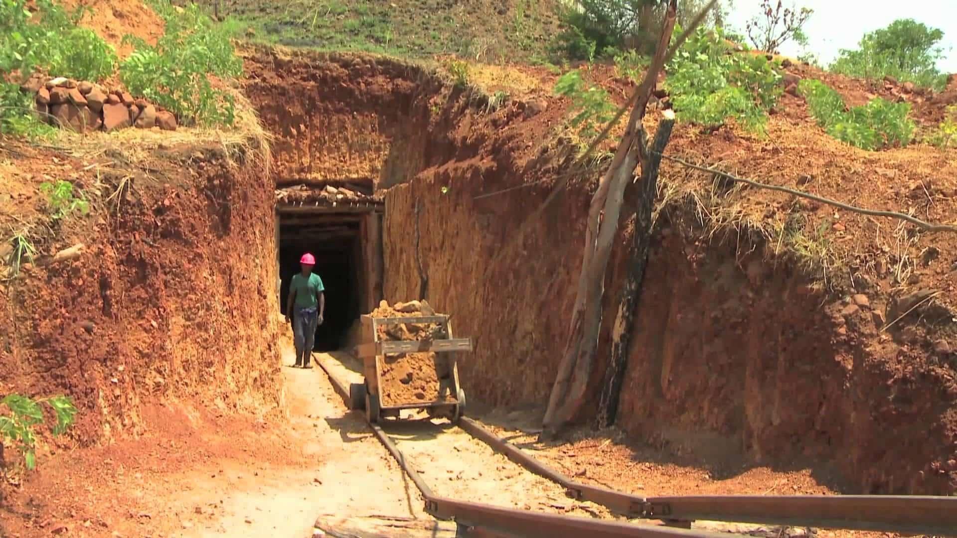 Zimbabwe Needs US$20 Million For National Exploration Exercise » 263Chat