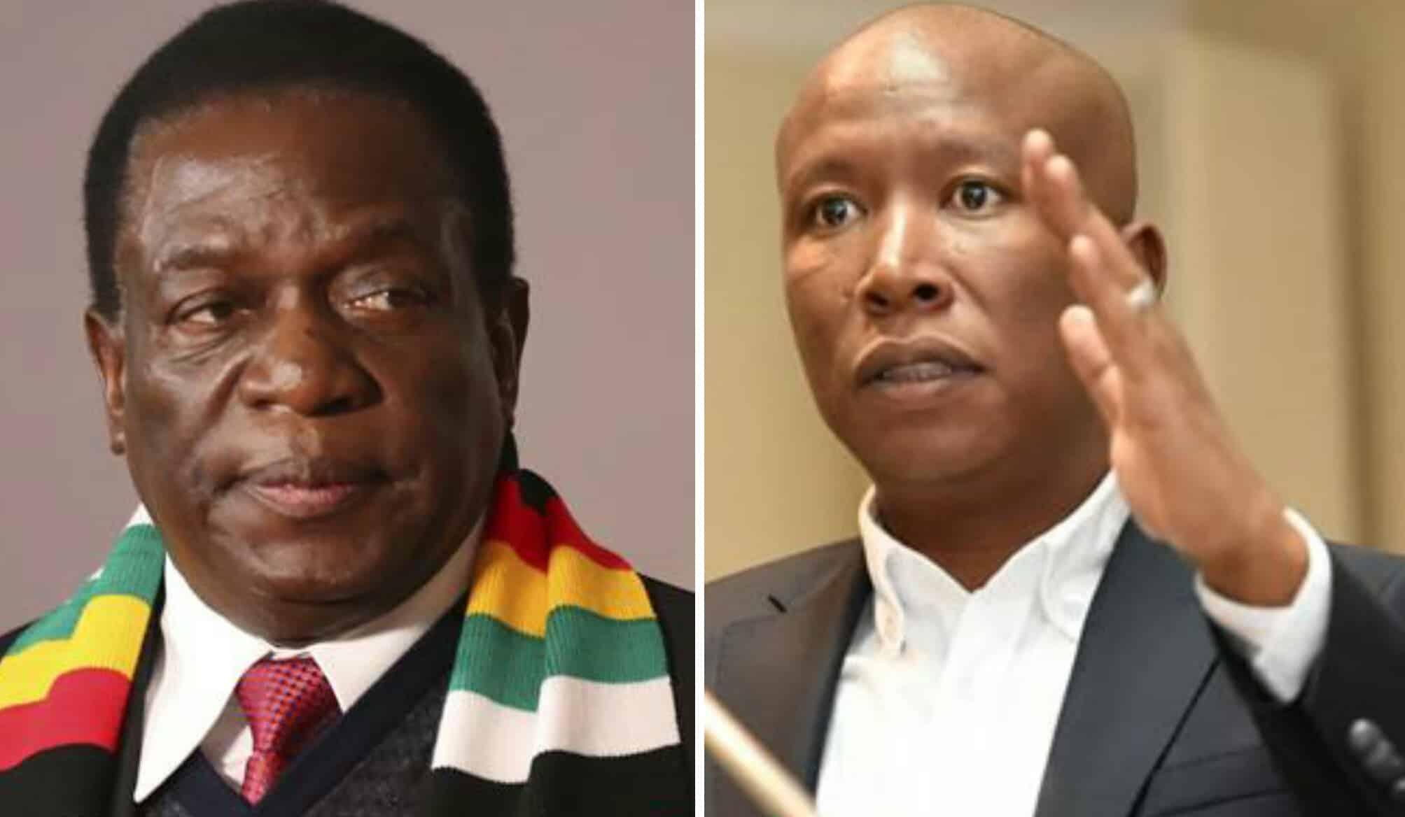 Malema Torches Diplomatic Tiff With Zim But Mnangagwa Shoots Back » 263Chat