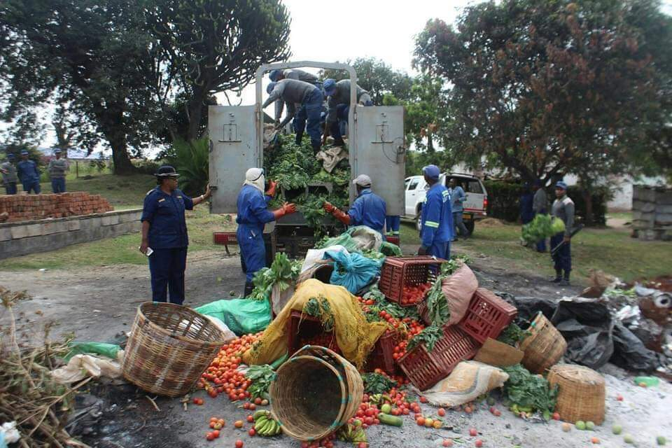 Burning of Confiscated Vegetables in Mutare Must Be Investigated » 263Chat